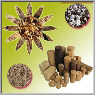 Biomass Briquetting Technology